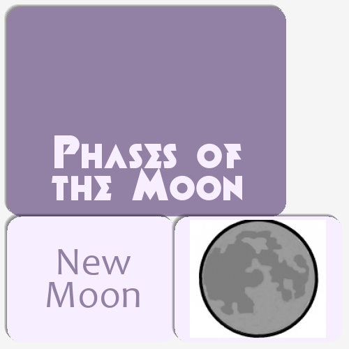 Phases of the Moon Matching Game