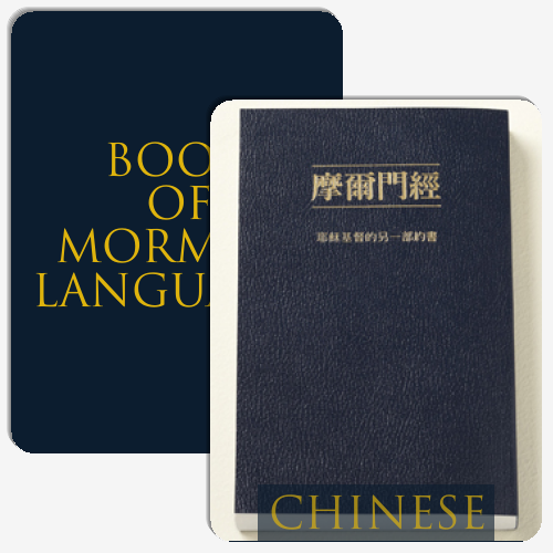 Book of Mormon Languages